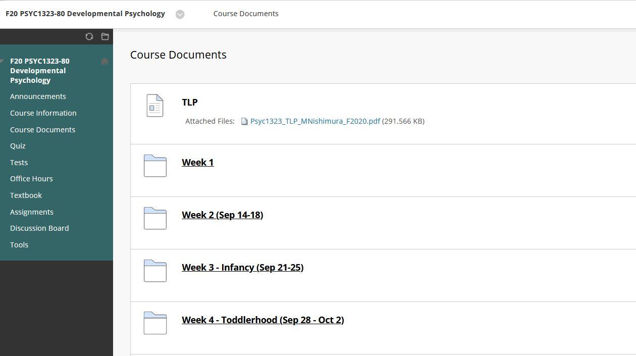 Screenshot of Blackboard Files and Folders