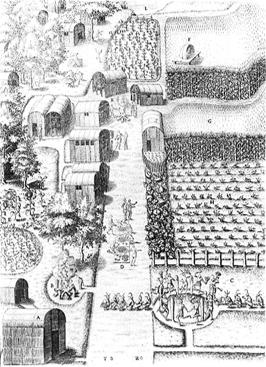 Iroquoian Village Illustration
