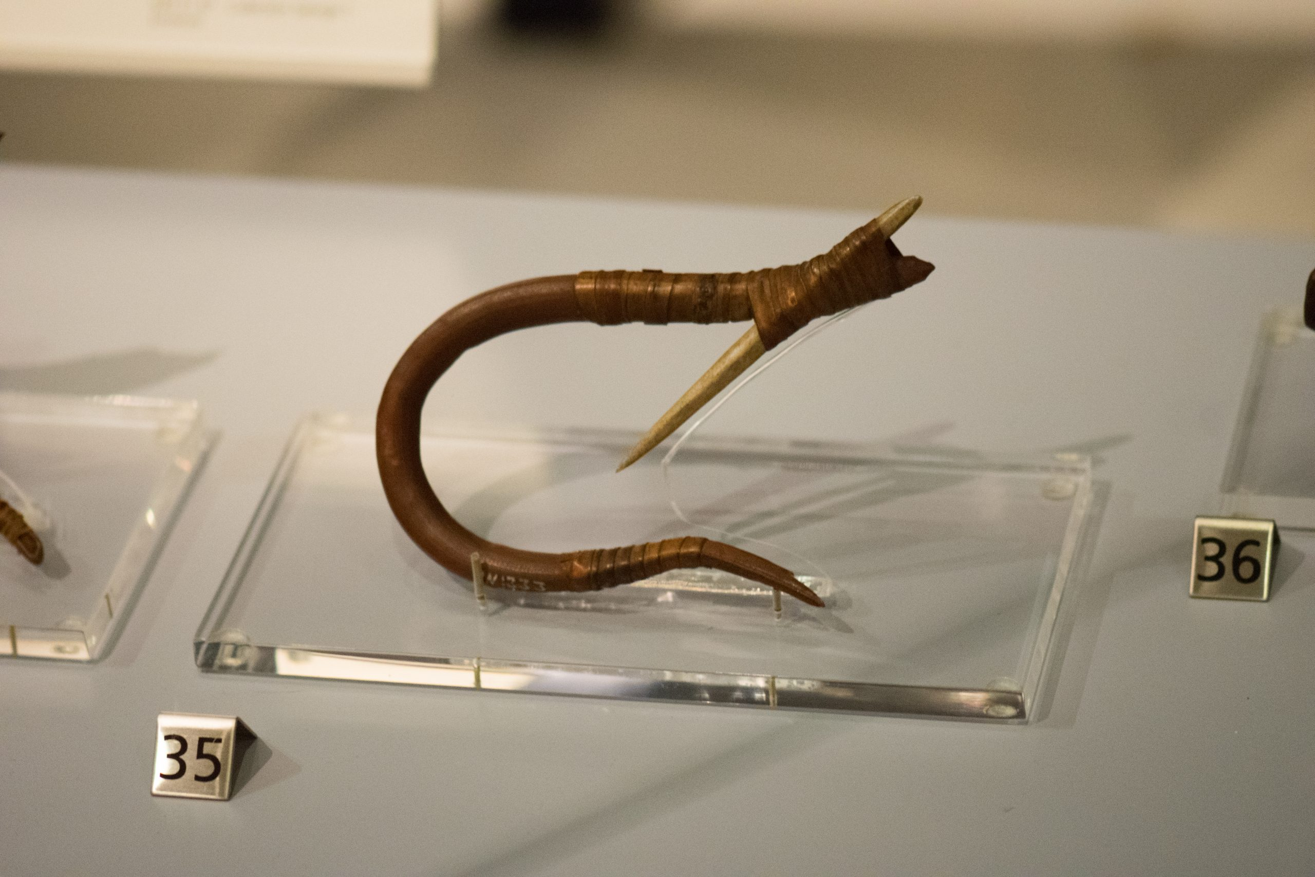 A 200 year old fishing hook made of bone and plant fibers by members of Haida First Nation. Photographer: Thomas Quine/Credits: Royal Ontario Museum, 2017
