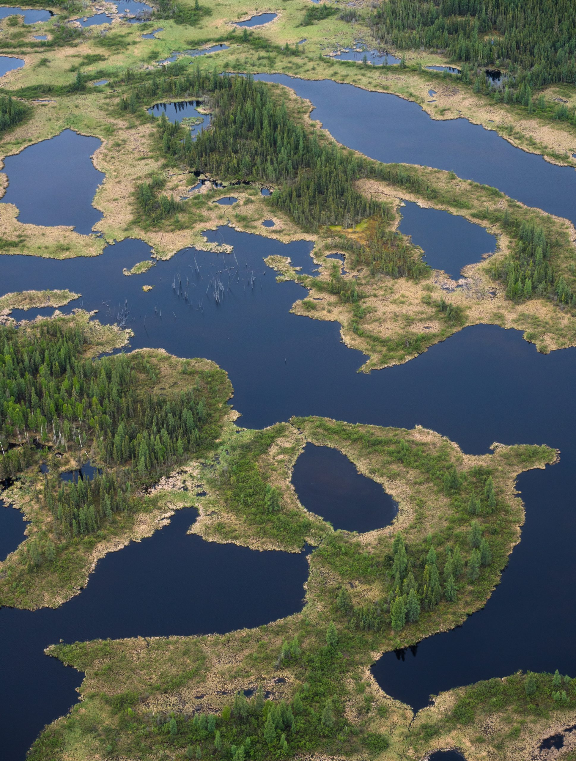 Patches of islands on blue water. Aerial view of the lowlands of Wood Buffalo National Park. Attributed to: Louis Bockner/Sierra Club BC