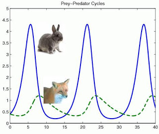 Predator-Prey Model: Wave graph depicting the inverse cycle of how population of foxes and rabbits grow (waves for each animal is in the opposite direction of eachother)
