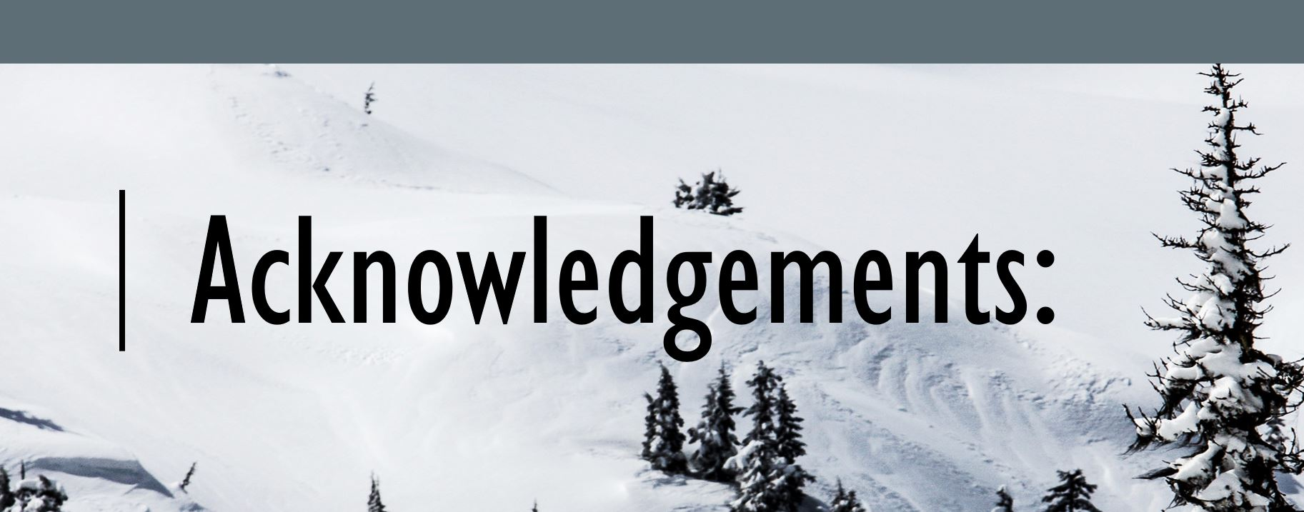 Acknowledgements. Background of snowy mountain top with fern trees.