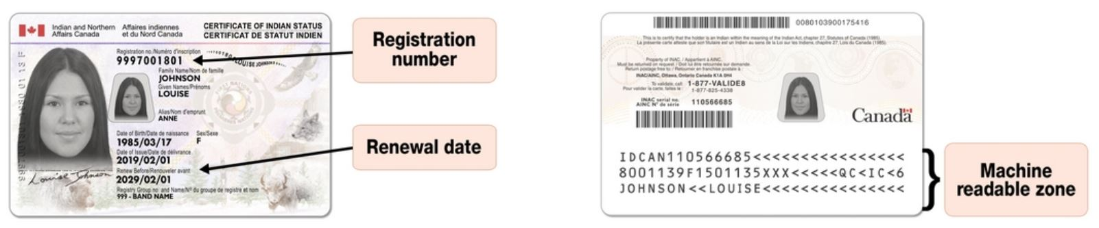 Sample Secure Certificate of Indian Status Card, issued centrally by Indigenous Services Canada (2019). Credits to: ISC, Government of Canada.