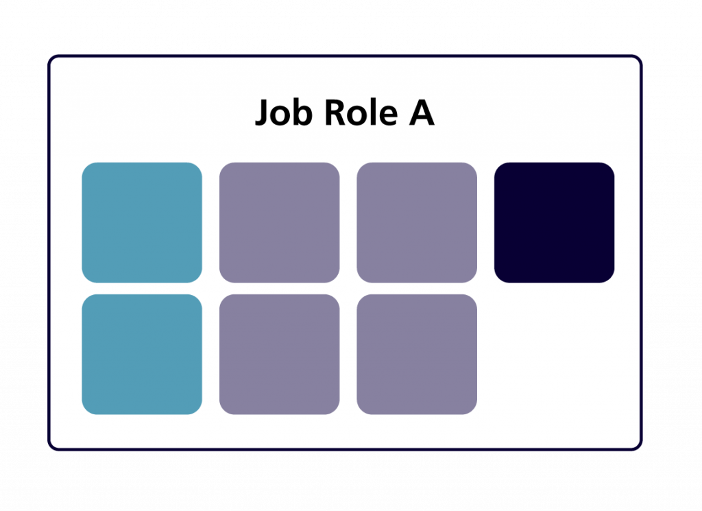 A series of boxes illustrating the competencies for one job role