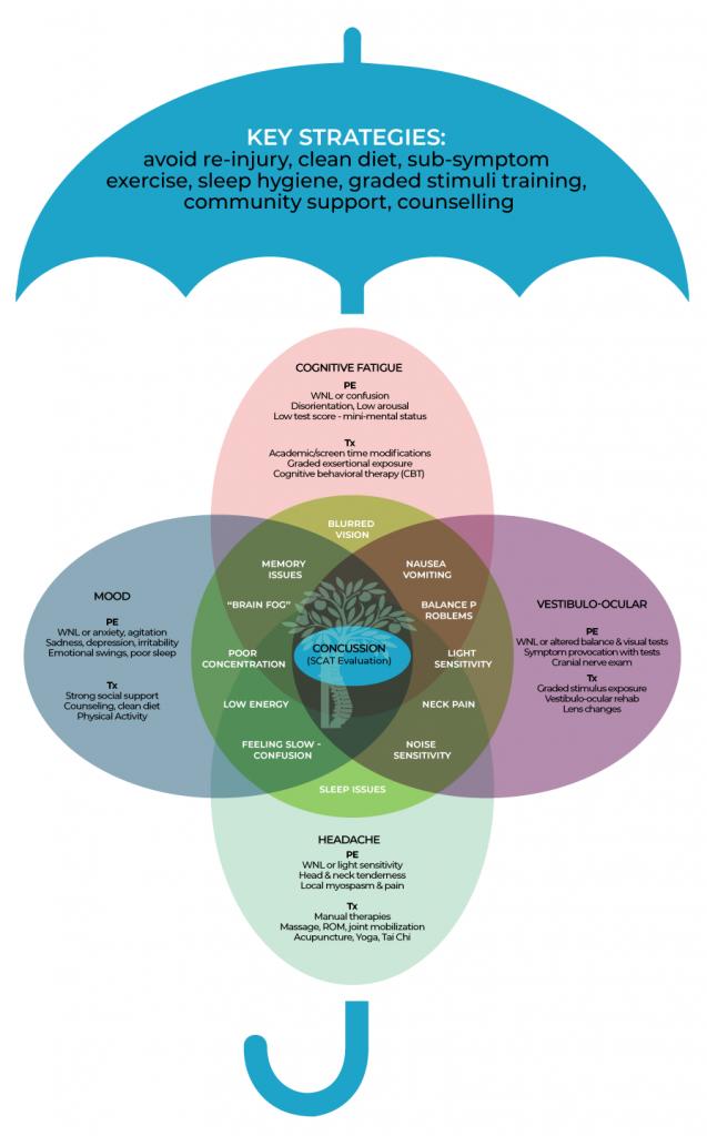 Multidisciplinary Concussion Management