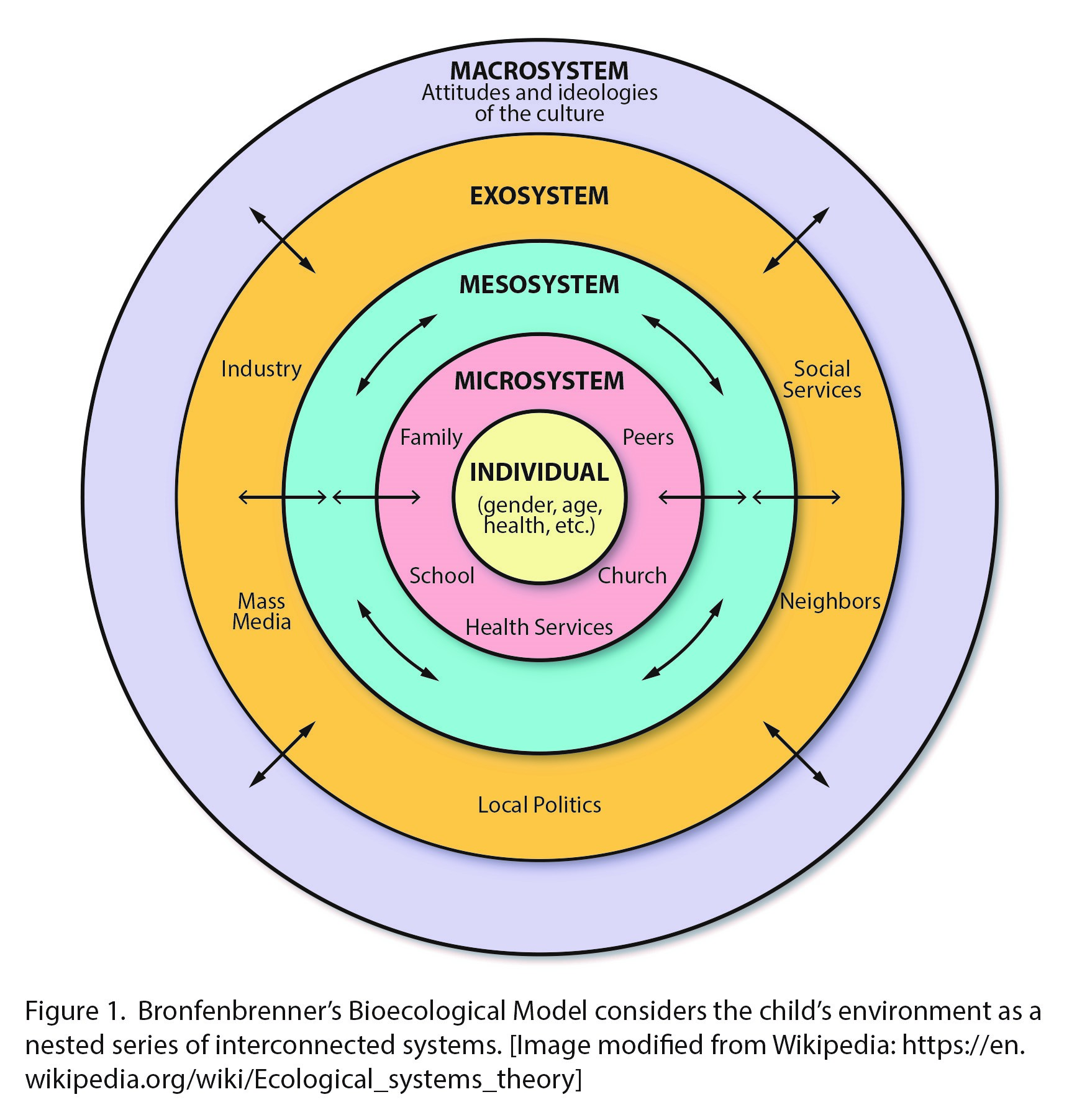 This is a diagram of Bronfrenbrenner's Bioecological Model which considers the child's environment as a nested series of interconnected systems. The diagram shows a circle with a series of 5 nested layers within it. On the outer most ridge is the Macrosystem which includes attitudes and ideologies of the culture. The next layer towards the center is the Exosystem. This includes social services, neighbours, local politics, mass media, and industry. The next layer toward the center is called the Mesosystem. The mesosystem is a layer between the exosystem and the microsystem. The next layer is the microsystem. The microsystem includes peers, church, health services, school, and family. The innermost layer, the centre of the circle, is the individual. The individual layer includes gender, age, health, etc.