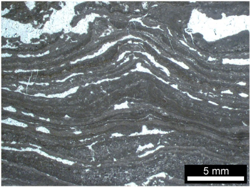 Photograph of a rock formation dated to 3.4 billion years ago containing what look like strata, thought to be layers of photosynthetic, fossilized bacteria.