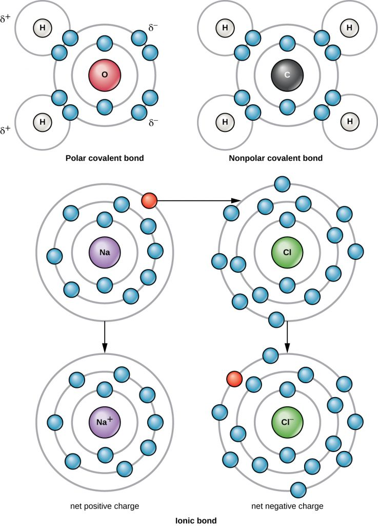 Diagrams depicting the polar covalent bond of a water molecule, the nonpolar covalent bonds  of methane and and the ionic bonds of sodium chloride.