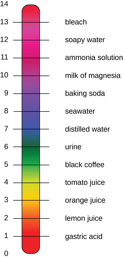 A diagram of the pH scale.