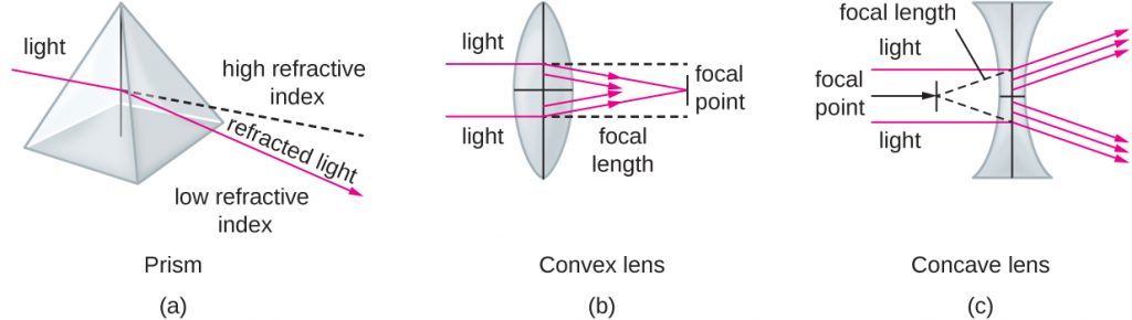 (a) A diagram of a lens, which is like a collection of prisms. (b) When light passes through a convex lens, which bulges in the centre, it is refracted toward a focal point on the other side of the lens. The focal length is the distance to the focal point. (c) Light passing through a concave lens, which narrows in the centre, is refracted away from a focal point in front of the lens.