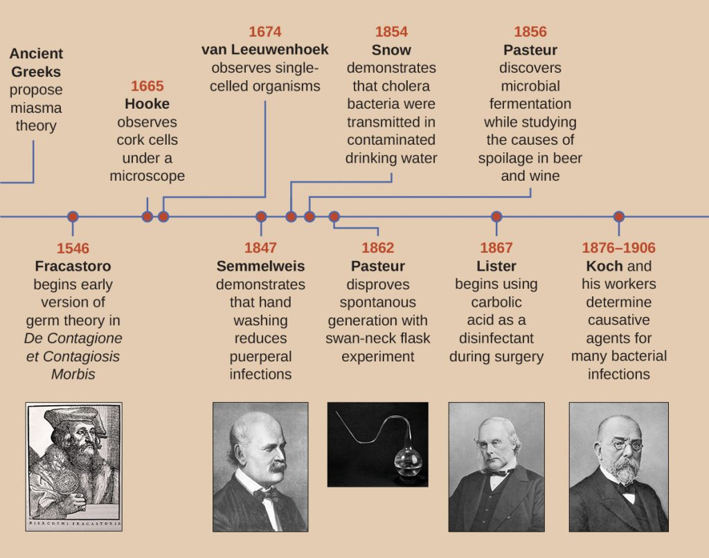 A timeline of the development of the field of microbiology.