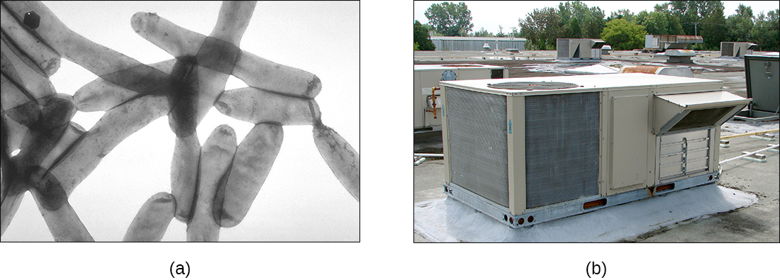 A) A micrograph of rod shaped cells. B) A photograph of an air conditioner.