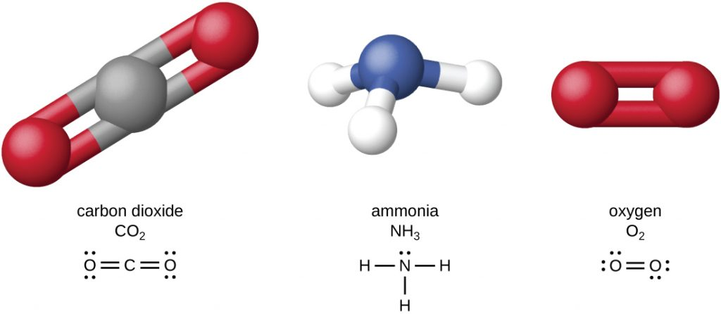 Diagram depicting the structures of carbon dioxide, ammonia and oxygen.