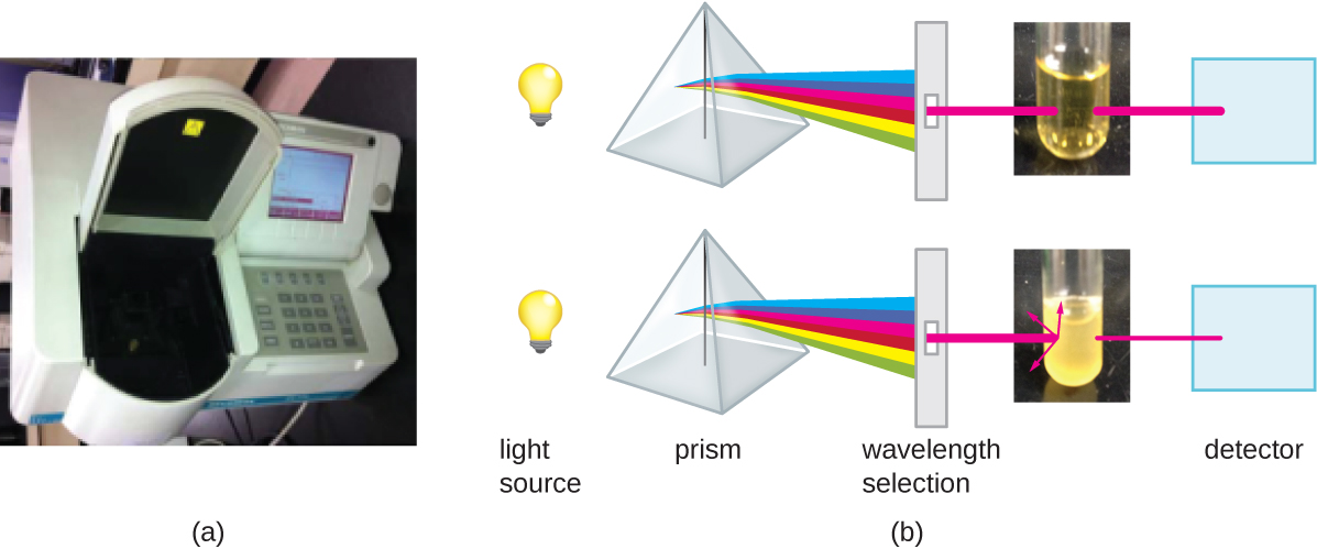 a) A photograph of a spectrophotometer; a machine with a keypad and a place to put a sample. b) A diagram explaining how the spectrophotometer measures turbidity. A light source passes through a prism and a single wavelength is selected. If this beam of light passes through a clear broth, most of the light reaches the detector. If this beam of light passes through a cloudy sample, much of the light is reflected and refracted and only a little bit of light reaches the detector.