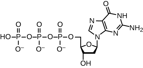 Diagram of the structure of dGTP