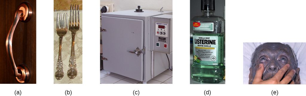 a) photo of a copper door handle. B) Picture of silver forks. C) Picture of an incubator d) picture of Listerine mouthwash. E) Picture of a person with grey skin.
