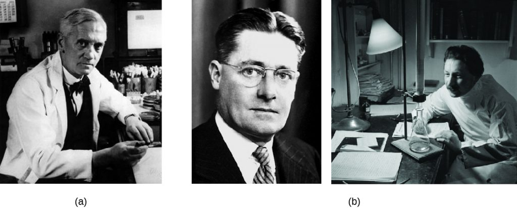 a) Photo of Alexander Fleming. B) Photo of Howard Florey and Ernst Chain.