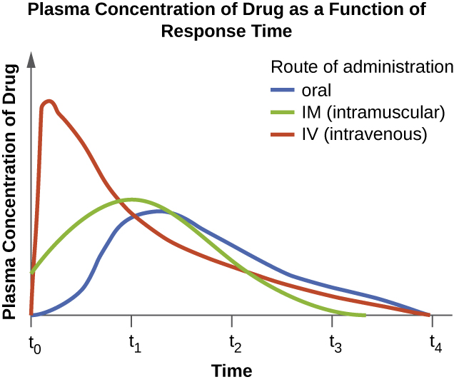 Graph with time on the X axis and Plasma Concentration of Drug on the Y axis. IV route increases plasma concentration very quickly and then tapes off. Intramuscular rout and oral route increase concentrations more slowly with the intramuscular route being a bit faster than oral but also dropping off more quickly.