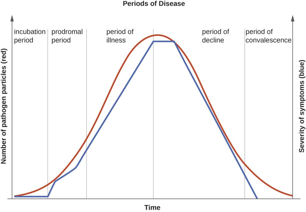 A graph depicting the 5 periods of infectious disease, beginning with the incubation period.