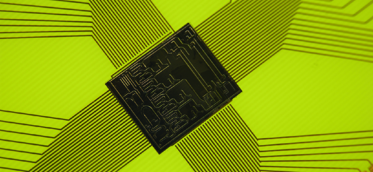 Picture of a computer chip as a representation of how immunological assays can be miniaturized.