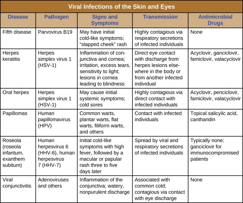 223 Viral Infections Of The Skin And Eyes  Microbiology -5711