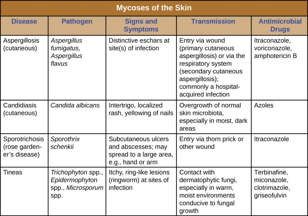 Table summarizing mycoses of the skin - their causes, signs and symptoms, transmission and treatment