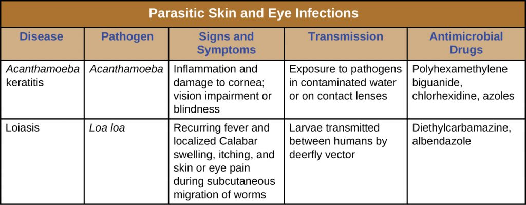 Table titled: Parasitic Skin and Eye Infections. Columns: Disease, Pathogen, Signs and Symptoms, Transmission, Antimicrobial Drugs. Acanthamoeba keratis, Acanthamoeba, Inflammation and damage to cornea; vision impairment or blindness, Exposure to pathogens in contaminated water or on contact lenses, Polyhexamethylene biguanide, chlorhexidine, azoles.