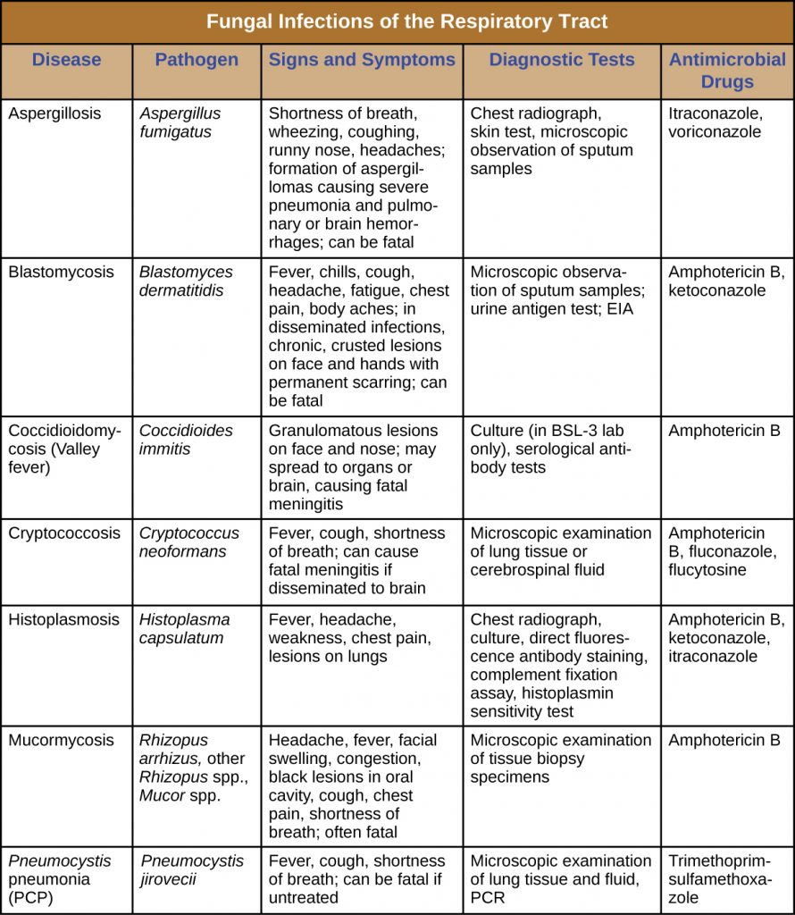 Table summarizing fungal infections of the respiratory tract including the causative agent, signs and symptoms, diagnostic tests and treatment