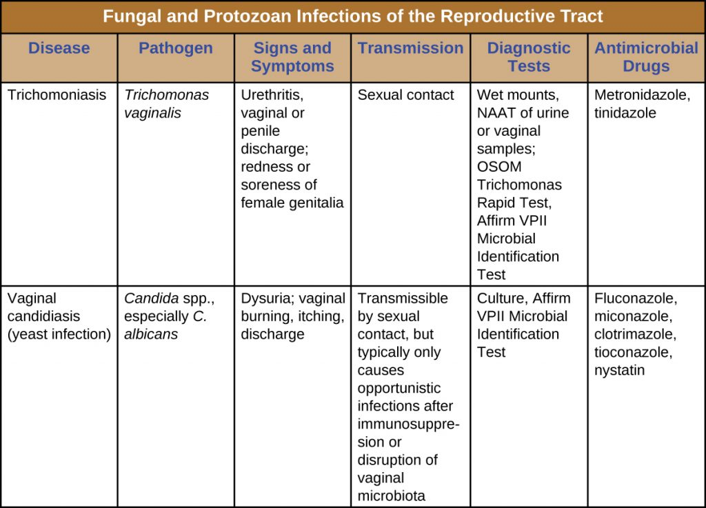 Table summarizing fungal and protozoal infections of the reproductive tract, including signs and symptoms, mode of transmission, diagnostic tests and treatment