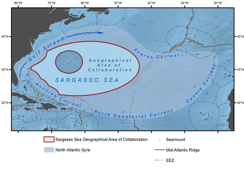 A map depicting the Sargasso Sea and the four separate currents that define it.