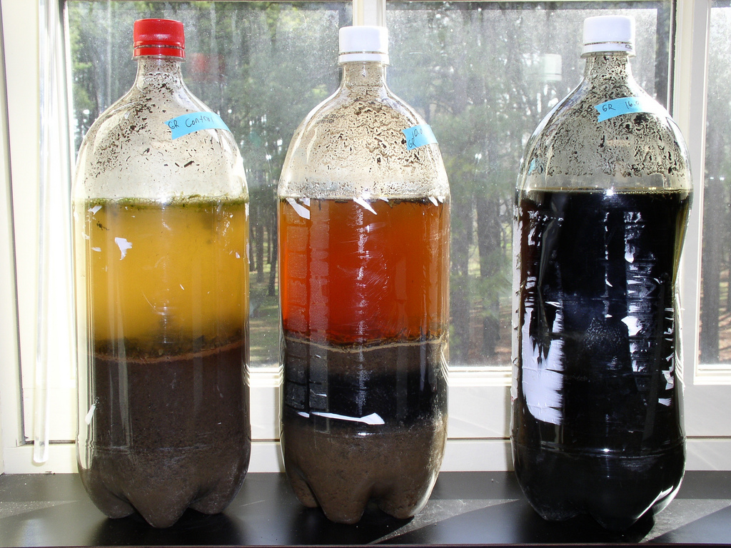 Three different-looking Winogradsky columns including one called a sulphuretum that contains sulphate-reducing bacteria and black ferrous sulphide