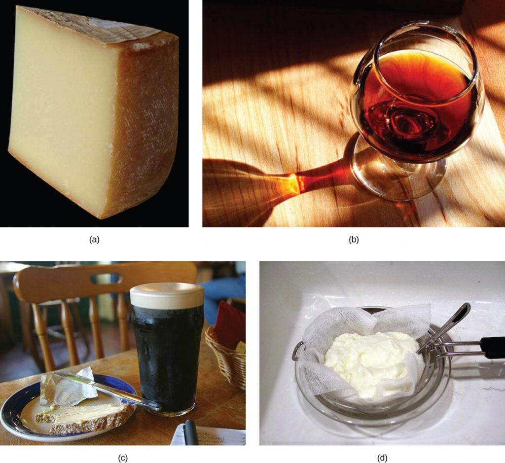 Photograph of foods and beverages produced by microbes: cheese, wine, beer and yogurt