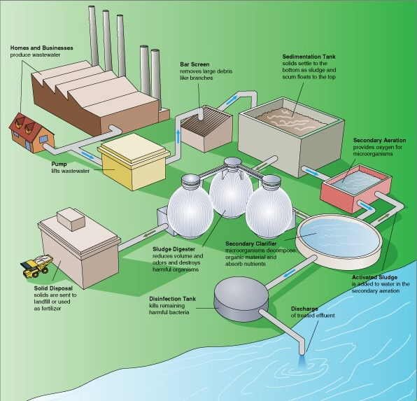 Diagram showing the typical wastewater treatment process.