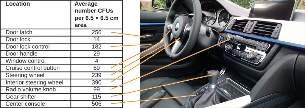 Photograph of car's dashboard and steering wheel with microbial cell counts on various areas