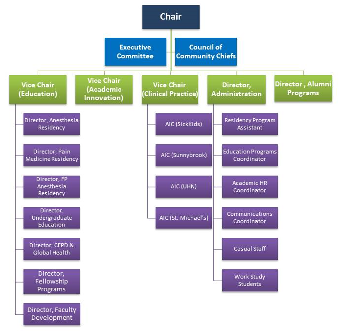 Four tiered hierarchy detailing the levels of one department at a large university. Chair is at the top, with two reports, followed by another 5 people reporting up. Three of the five in the third level have stacked reports.
