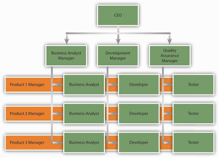 Image result for matrix organizational structure