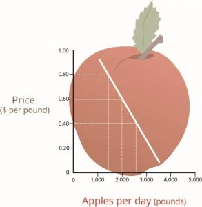 A graph with numbers 0-5000 on the X axis for pounds of apples per day and 0-1.0 for Price per pound on the Y axis. The demand curve shows a diagonal line moving lower from left to right.