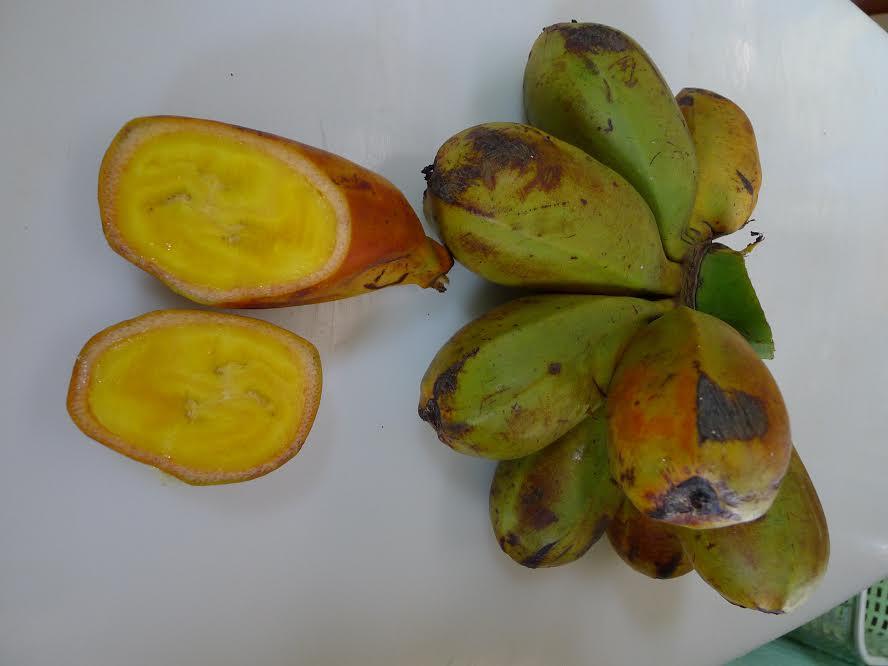 Sliced karat bananas