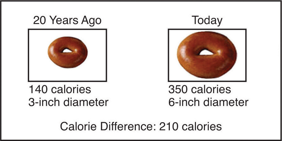 Serving size changes demonstrated by the sizes of two donuts