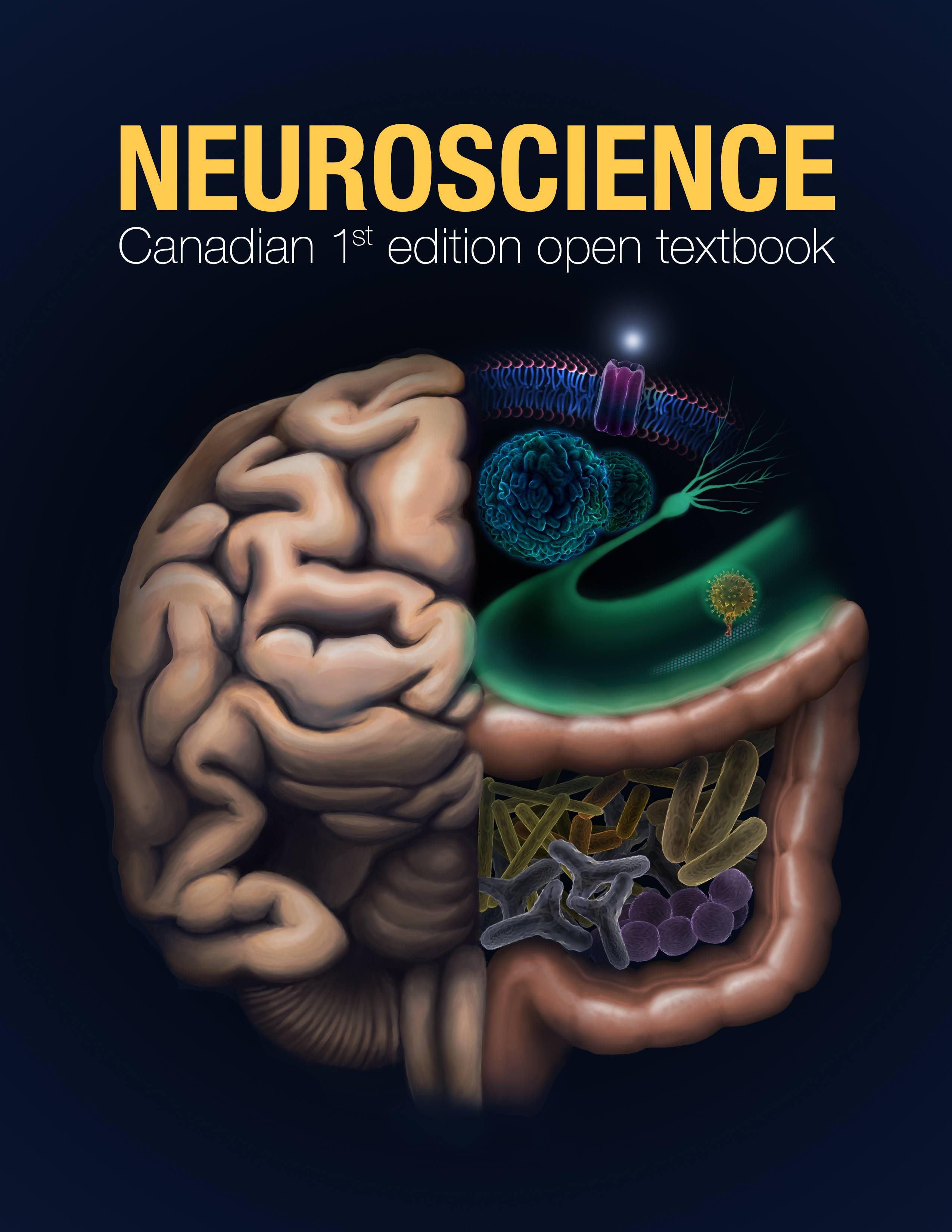 Cover image for Neuroscience: Canadian 1st Edition