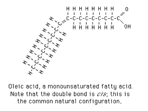 Chemistry of Oleic Acid