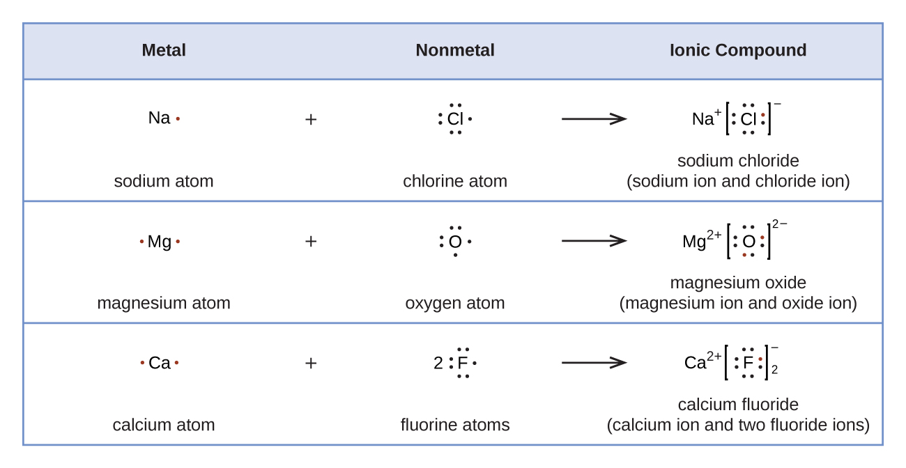 """A table is shown with four rows. The header row reads """"Metal,"""" """"Nonmetal,"""" and """"Ionic Compound."""" The second row shows the Lewis structures of a reaction. A sodium symbol with one dot, a plus sign, and a chlorine symbol with seven dots lie to the left of a right-facing arrow. To the right of the arrow a sodium symbol with a superscripted plus sign is drawn next to a chlorine symbol with eight dots surrounded by brackets with a superscripted negative sign. One of the dots on the C l atom is red. The terms """"sodium atom,"""" """"chlorine atom,"""" and """"sodium chloride ( sodium ion and chloride ion )"""" are written under the reaction. The third row shows the Lewis structures of a reaction. A magnesium symbol with two red dots, a plus sign, and an oxygen symbol with six dots lie to the left of a right-facing arrow. To the right of the arrow a magnesium symbol with a superscripted two and a plus sign is drawn next to an oxygen symbol with eight dots, two of which are red, surrounded by brackets with a superscripted two a and a negative sign. The terms """"magnesium atom,"""" """"oxygen atom,"""" and """"magnesium oxide ( magnesium ion and oxide ion )"""" are written under the reaction. The fourth row shows the Lewis structures of a reaction. A calcium symbol with two red dots, a plus sign, and a fluorine symbol with a coefficient of two and seven dots lie to the left of a right-facing arrow. To the right of the arrow a calcium symbol with a superscripted two and a plus sign is drawn next to a fluorine symbol with eight dots, one of which is red, surrounded by brackets with a superscripted negative sign and a subscripted two. The terms """"calcium atom,"""" """"fluorine atoms,"""" and """"calcium fluoride ( calcium ion and two fluoride ions )"""" are written under the reaction."""