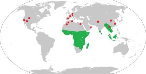 Map of Range of living strepsirrhine primates and Eocene-Miocene fossil sites (red).
