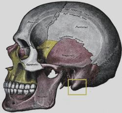 Figure 8.53