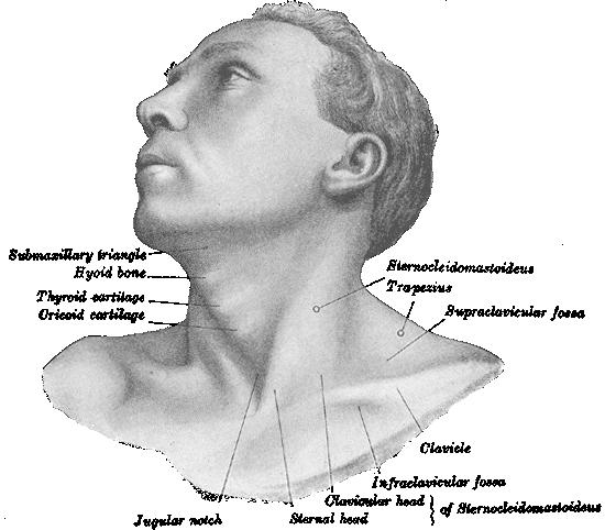 Figure 8.54