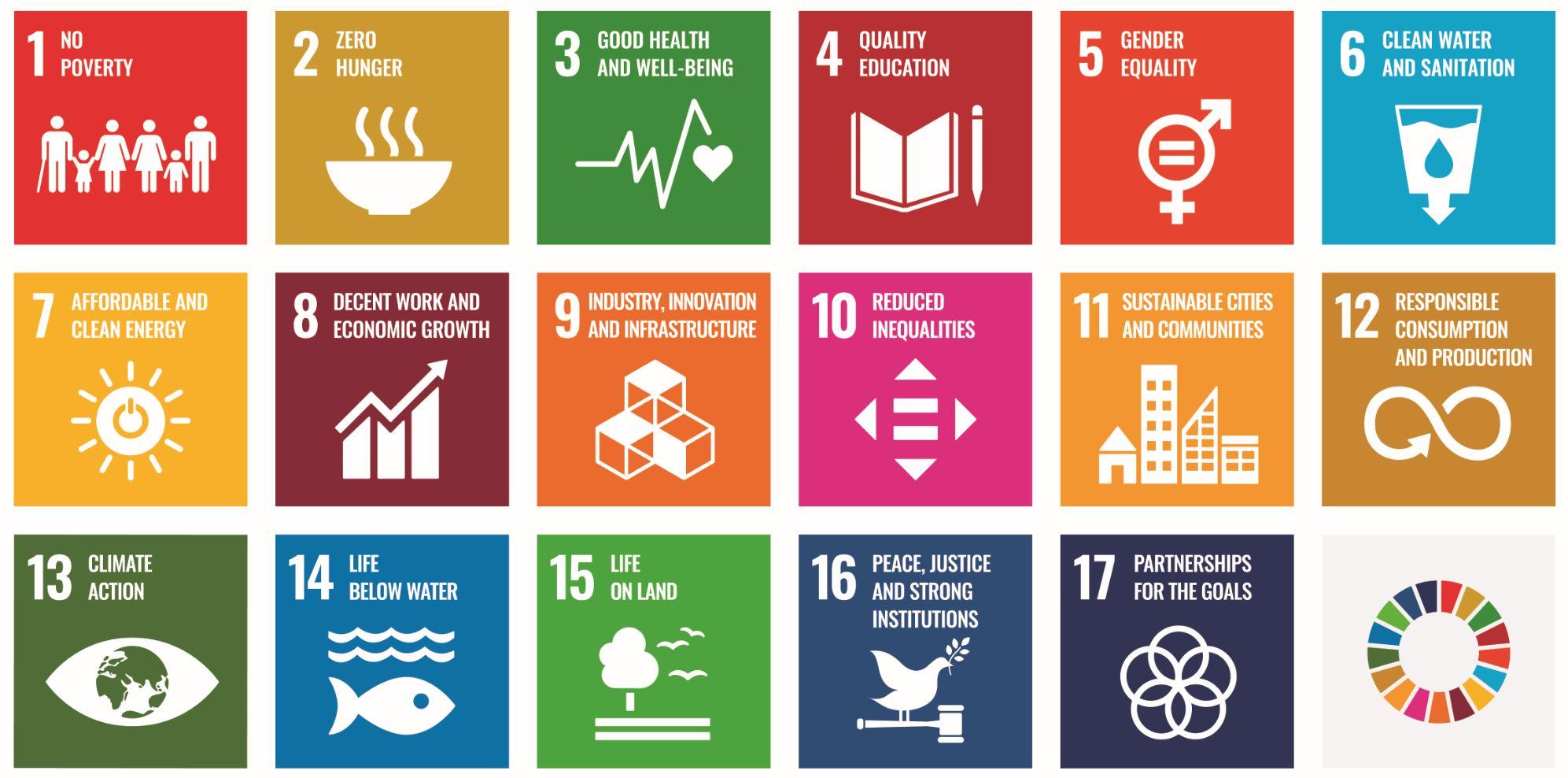 Figure 2: UN's 2030 Sustainable Development Goals (SDGs)