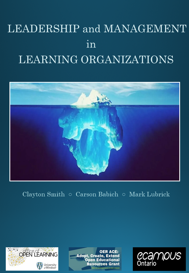 Cover image for Leadership and Management in Learning Organizations