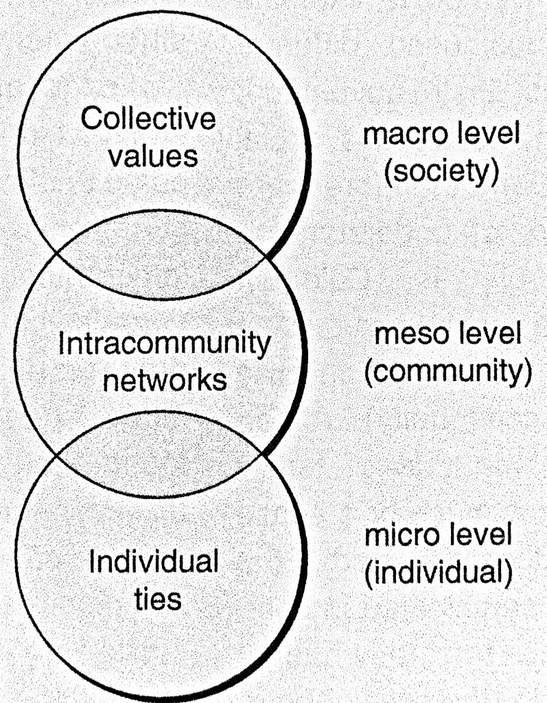 At the macro level, society, there are collective values. At the meso level, community, there are intracommunity networks. At the micro level, individual, there are individual ties.