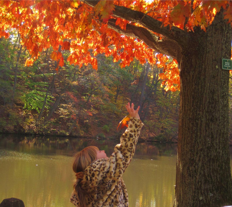 Child catching an autumn leaf. Image description available.