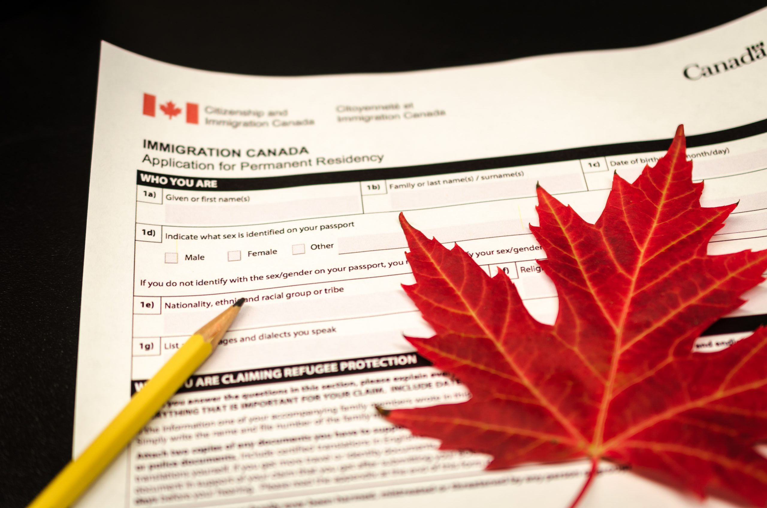 There is an application for Canadian immigration and it is a metaphor for challenges experienced by immigrants due to complex immigration process.